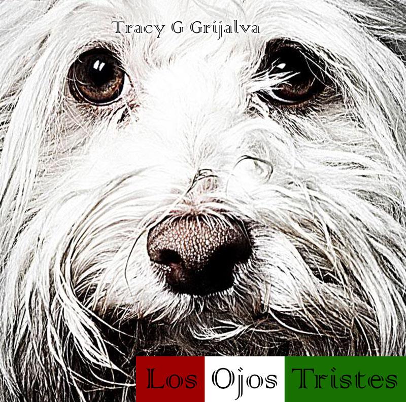 Tracy G Grijalva Los Ojos Tristes